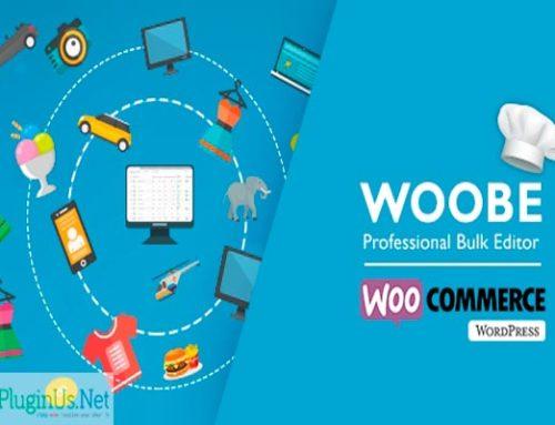 Редактор товара WooCommerce Bulk Editor Professional — WOOBE